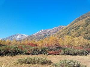 雄大な山とのコントラストが素敵です!