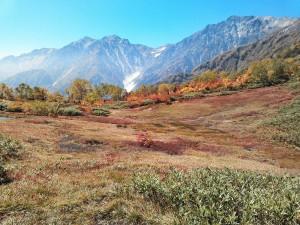 自然園最奥の「展望湿原」からは「白馬大雪渓」も望めます♪