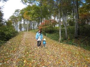 落ち葉のじゅうたんが素敵です!