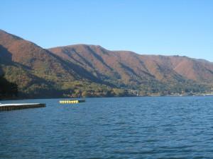 湖面からの紅葉