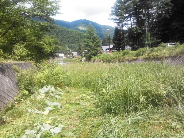 恒例「犬川」草刈作業