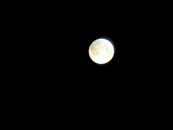 綺麗な満月