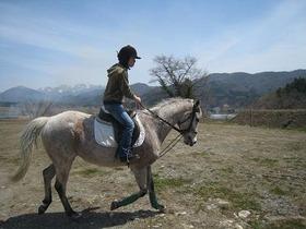 大自然の白馬で『乗馬体験』プラン