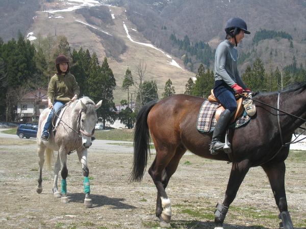 雪解けの白馬で乗馬体験♪