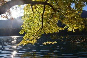 紅葉に染まった青木湖