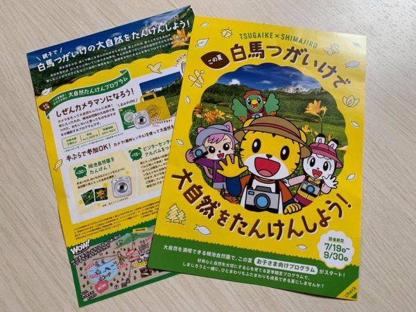 栂池 イベント情報!